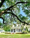 Beautiful homes in the Charpentier District of Lake Charles