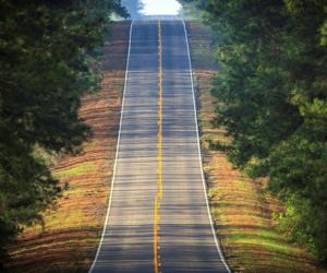 Toledo Bend Forest Scenic Byway